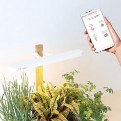 Domowy ogródek z łącznością Bluetooth LILO CONNECT (3 pods)