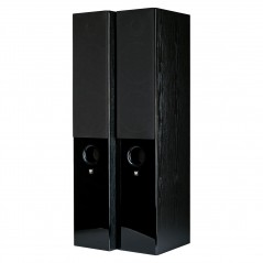 Floorstanding speaker RAPTOR 7 BLACK